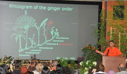 ginger talk