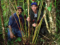 My counterpart, Billy Bau, and myself at one of the undescribed species that we collected from the highlands of PNG.